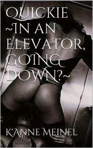 Quickie ~In an Elevator, GOING DOWN ~